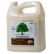 Cambistat Plant Growth Regulator, PGR, Rainbow Treecare